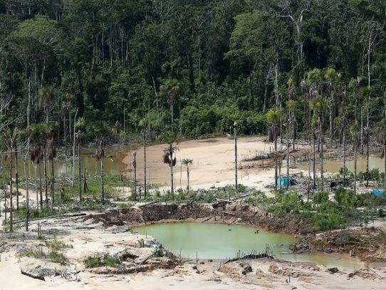 La Amazonía podría convertirse en una sabana en 50 años, según estudio