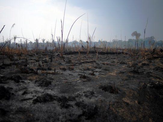 Incendios en Brasil continúan en aumento a pesar de prohibición de quemas