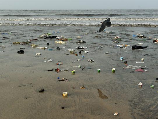 La ONU advierte de la urgencia de salvar los océanos para proteger a la humanidad