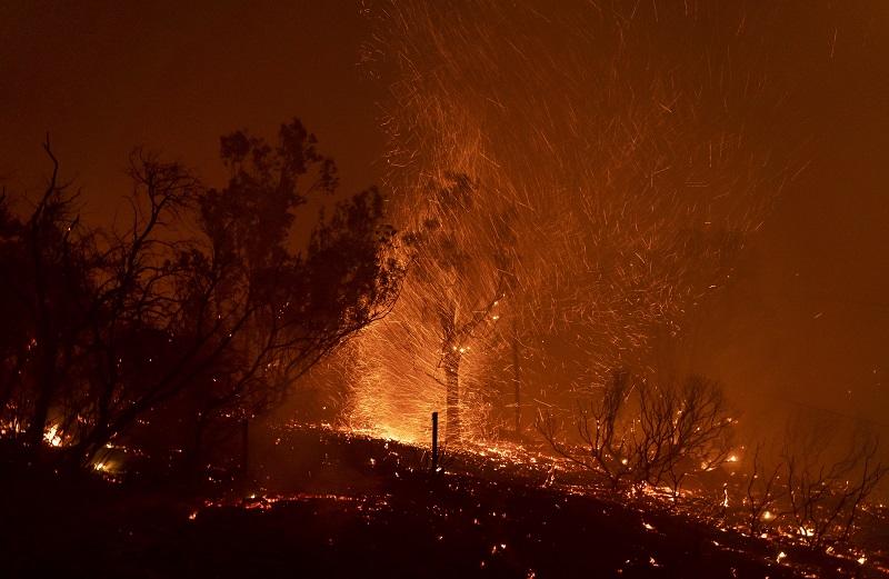 Turistas y habitantes huyen de los incendios forestales en Grecia