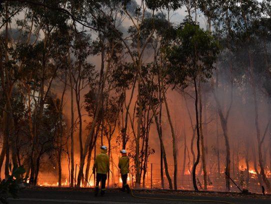 Australia lucha contra incendios forestales y se prepara para nueva ola de calor