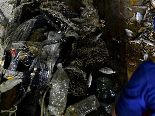 El Papa rinde homenaje a los pescadores que limpian el mar