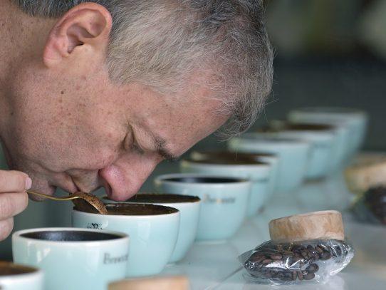 Café geisha, el exótico y carísimo lujo panameño