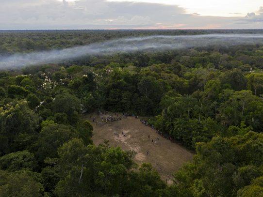 El drama del coronavirus hace menos audibles las motosierras de la Amazonía