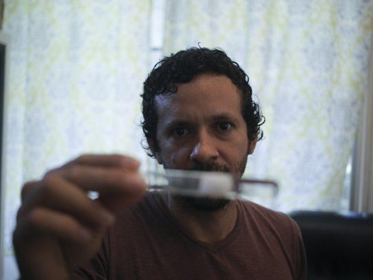 Científico panameño se lleva las hormigas a su casa por la COVID-19