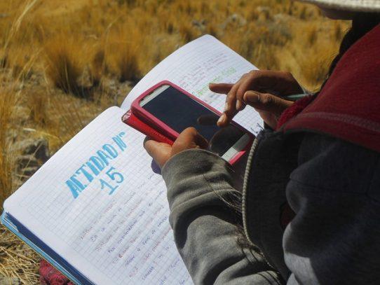 Bolivia da por terminado el año escolar por limitaciones en educación virtual