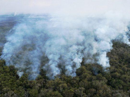 El incansable combate al fuego en el Pantanal, santuario de la biodiversidad