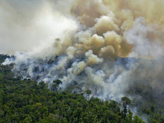 Ligera reducción mensual de incendios en Amazonía brasileña, tras pico de 2019