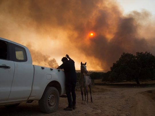 Más de 3.000 evacuados por incendio en suroeste de España retornan a sus hogares