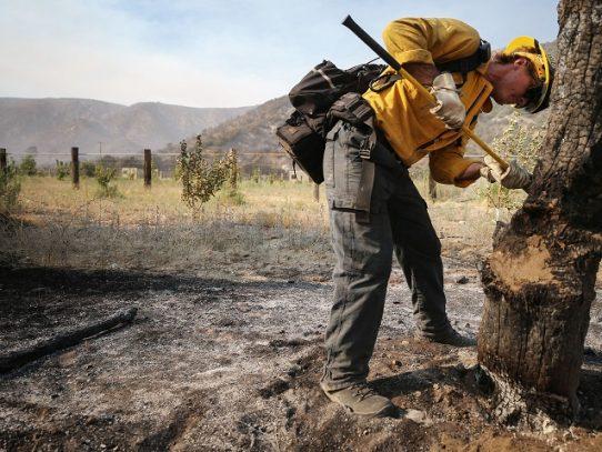 Cientos de evacuados en California por incendios azuzados por fuertes vientos