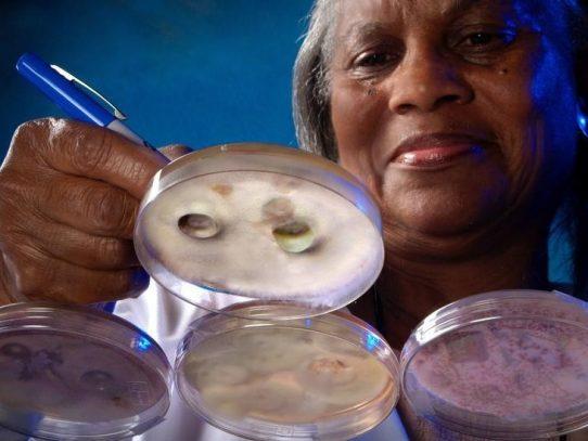 Detectan en EEUU primeros casos de infección con hongo potencialmente fatal