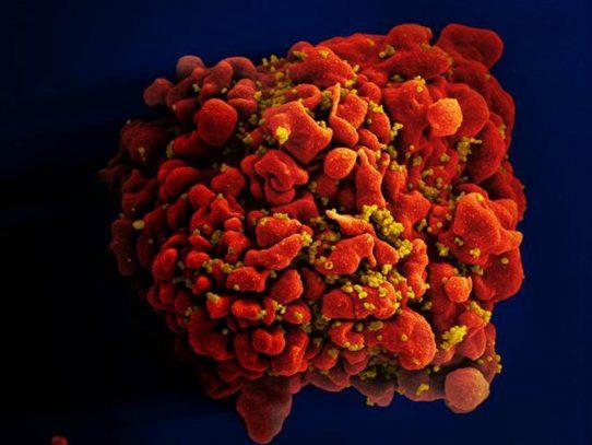 EEUU añade agentes, incluido el VIH, a lista de cancerígenos
