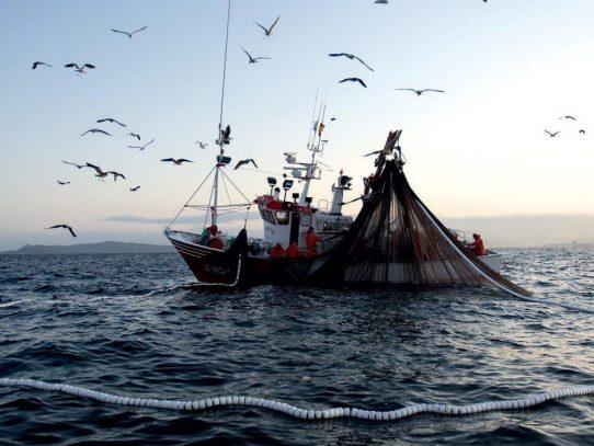 Unión Europea aprobó las cuotas de pesca en el Atlántico y el mar del Norte para 2017