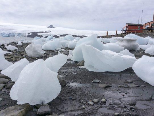 Cambio Climático se hace sentir en la Antartida