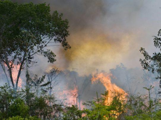 Dos gobernaciones bolivianas en emergencia por incendios forestales