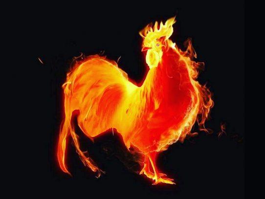Comunidad china en Panamá inicia celebración del año del gallo de fuego