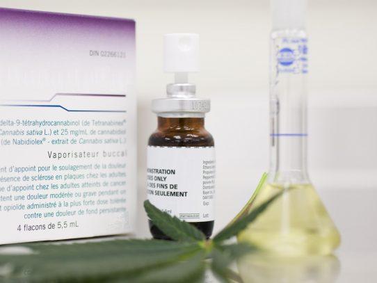 Aprueban en primer debate uso medicinal de la marihuana
