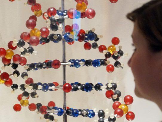Científicos contemplan la posibilidad de modificar ADN humano