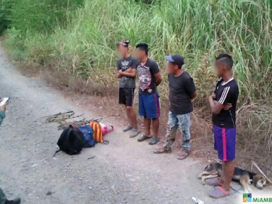 Arrestan a cuatro sujetos con siete iguanas verdes en Parque Nacional Camino de Cruces