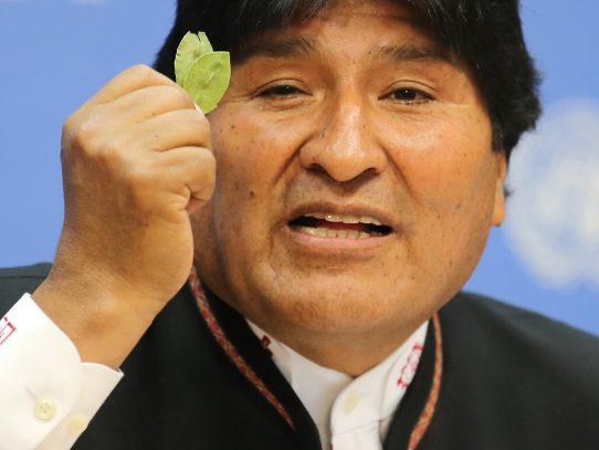 Presidente de Bolivia, Evo Morales, busca legalizar consumo de coca en el mundo