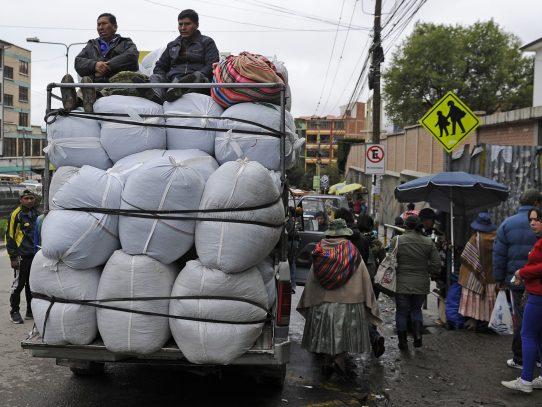 Bolivia aprueba ley que amplía cultivo de coca