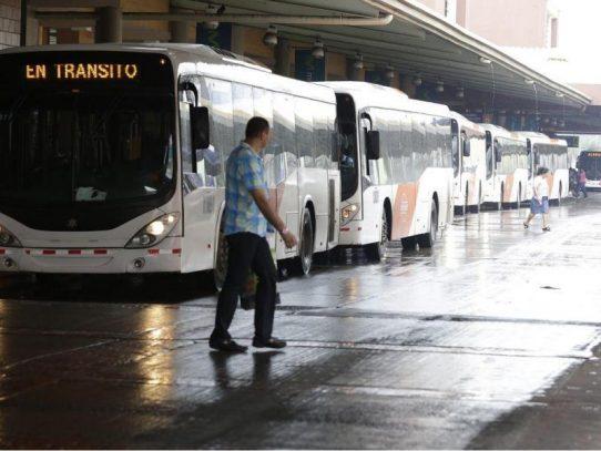 Gobierno compra 203 buses para San Miguelito