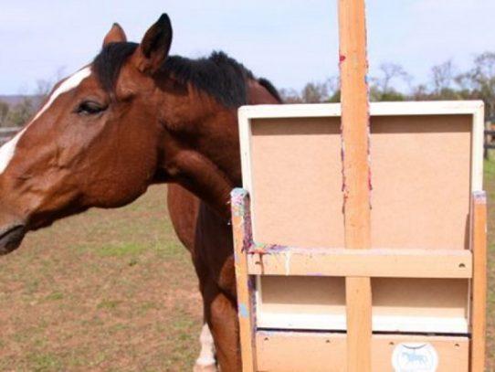 El caballo que salva su vida aprendiendo a pintar