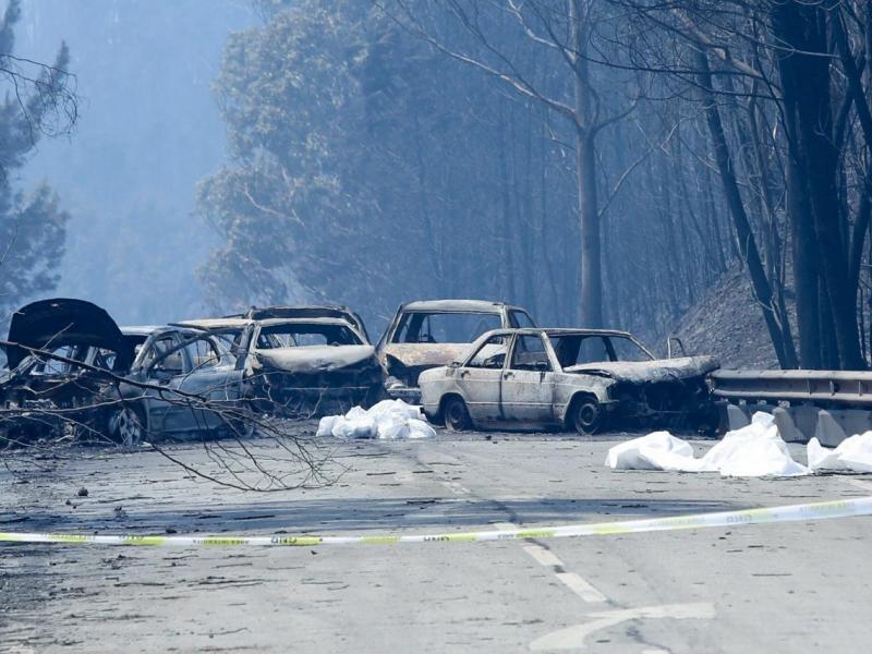 Cancillería lamenta tragedia por incendio en Portugal