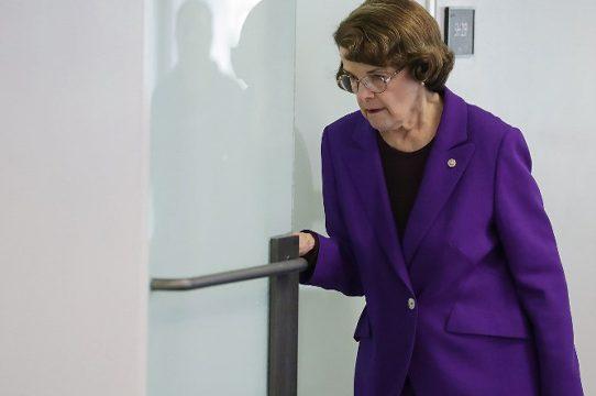 La senadora más longeva de EEUU, de 84 años, buscará quinto mandato
