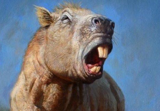 """Hallan en Inglaterra dientes de """"ratas"""" de hace 145 millones de años"""