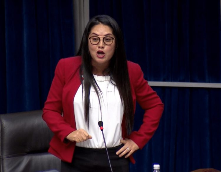 Gobierno se desvincula de polémico anteproyecto de ley de Zulay Rodríguez