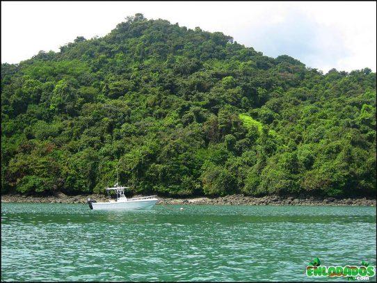 CIAM denuncia que entrada a Coiba está restringida