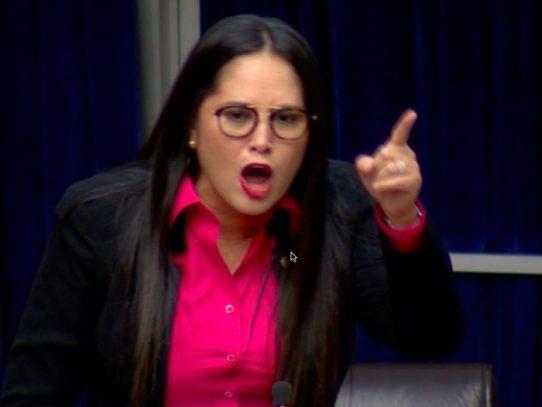Diputada Zulay Rodríguez demanda un artículo del Código Electoral