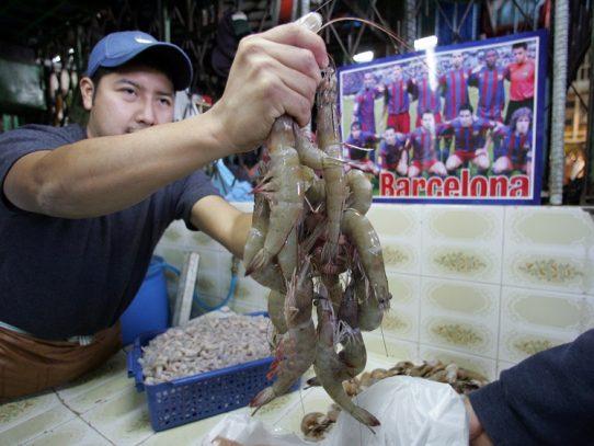 Inicia primer período de veda del camarón en Panamá