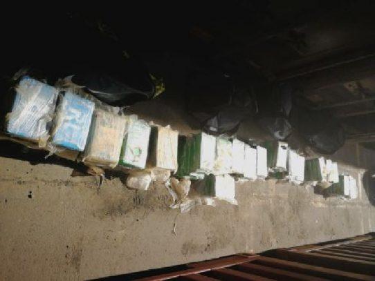 Incautan en puerto de la provincia de Colón droga dentro de un contenedor