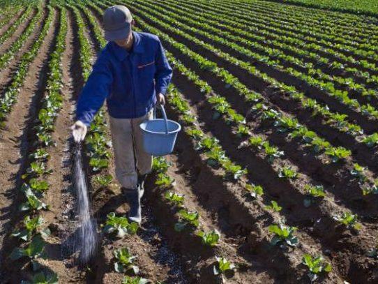 Una cooperación agrícola despreciada