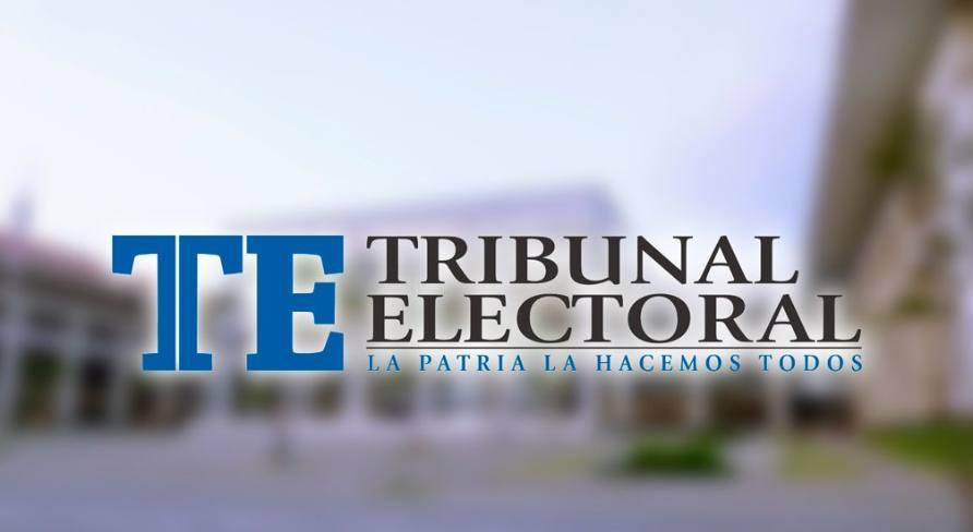 TE insta a  a miembros de partidos a crear cuenta única para elecciones primarias