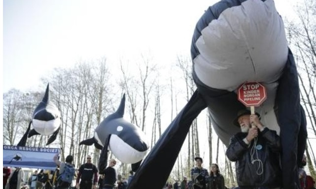 Justicia de Canadá suspende construcción del polémico oleoducto al Pacífico