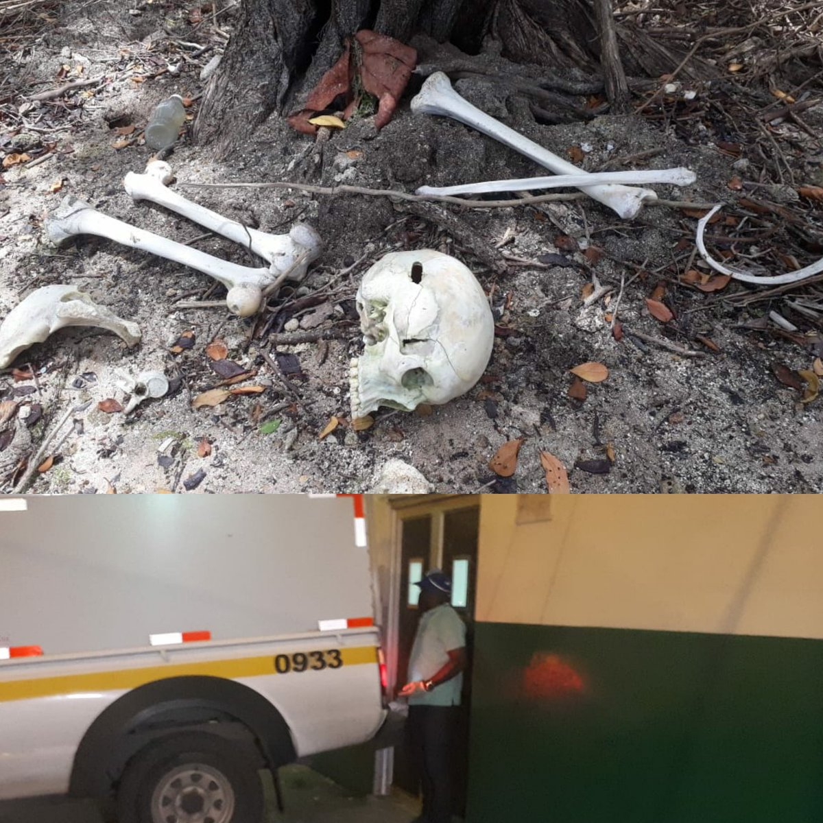 MP investiga  osamenta encontrada en Costa Arriba de Colón