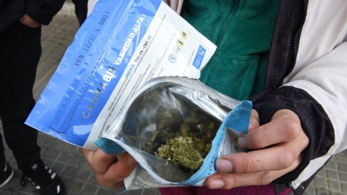 Las farmacias uruguayas vendieron más de 1.200 kg de marihuana desde julio de 2017
