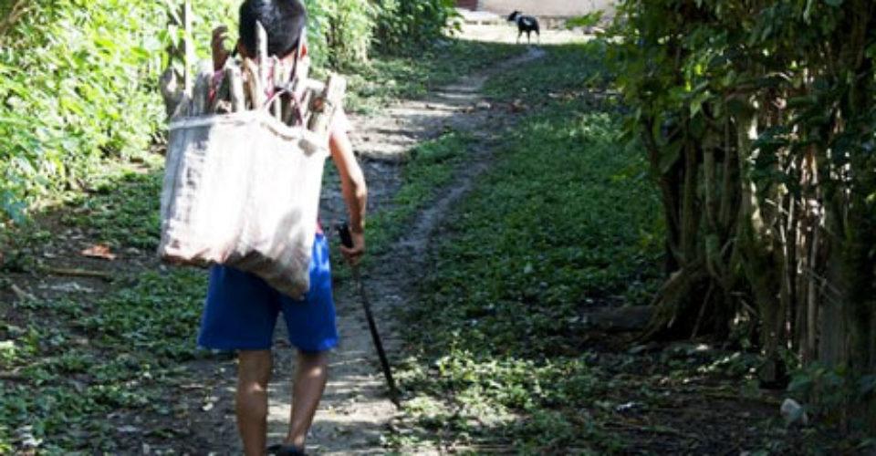 Panamá es excluida por EE.UU. de lista de trabajo infantil