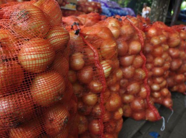 Aprueba importación de 10 mil quintales de cebolla para diciembre