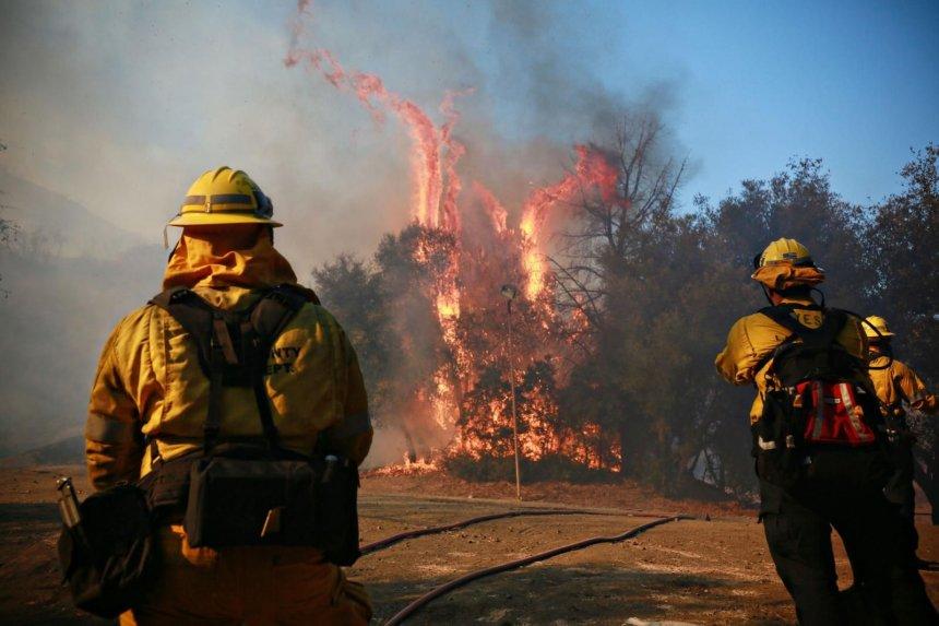 Fuertes vientos dificultan combate a incendios en California, que dejan 44 muertos