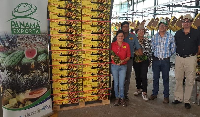 Dolce Pineapple de Chiriquí envía piña a Turquía bajo marca Panamá Exporta