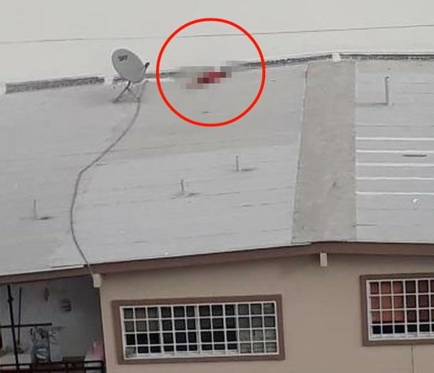 Mujer fallece tras caer de edificio ubicado en calle 73 San Francisco