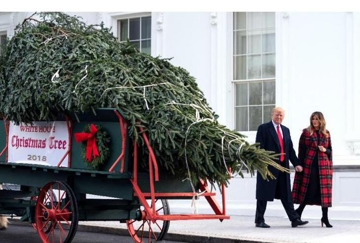 Donald y Melania Trump recibieron el árbol de la Navidad en la Casa Blanca