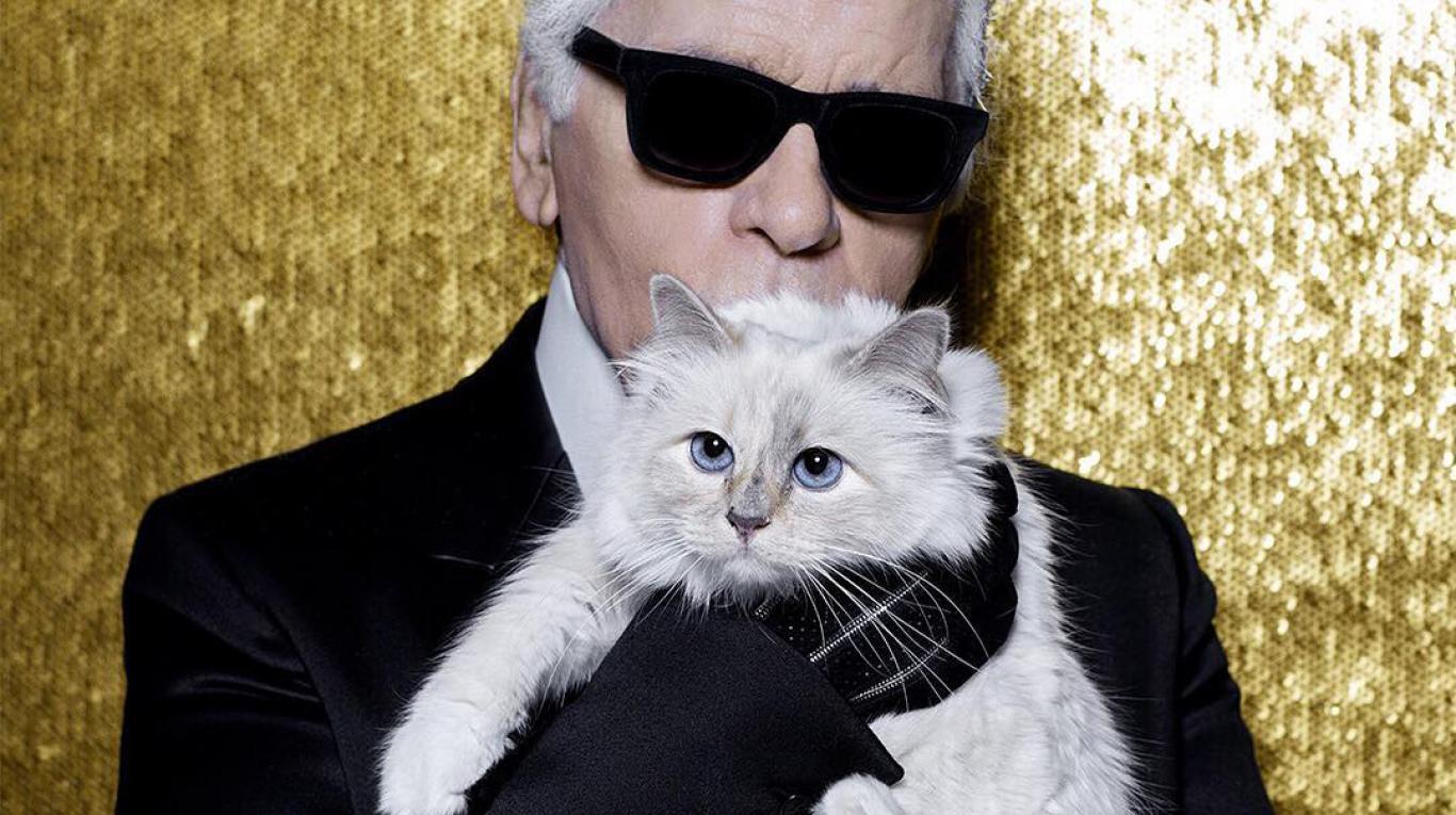 La gata Choupette heredera de la fortuna de Karl Lagerfeld