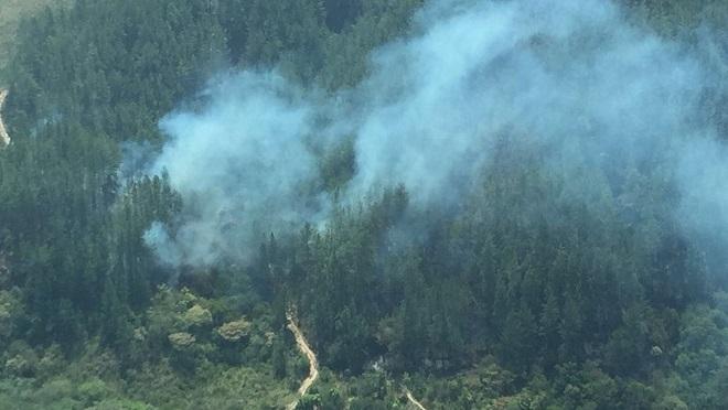 Incendio forestal obliga a evacuar el Parque Reserva La Yeguada