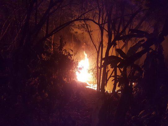 Incendios consumen cerca de 1.000 hectáreas de una área protegida en Darién