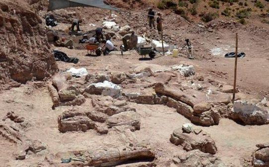 Descubren cementerio de fósiles de 220 millones de años en Argentina
